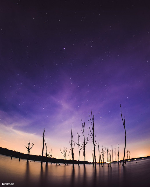 Manasquan Reservoir - Photo by Michael McHugh
