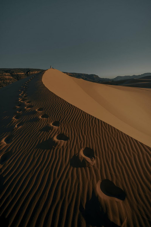 Coral Pink Sand Dunes State Park - Photo by Clay Banks