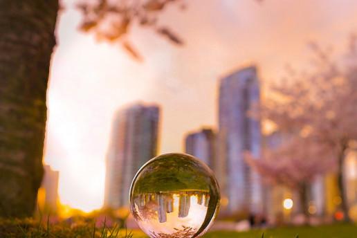 David Lam Park - Photo by Fery Lim