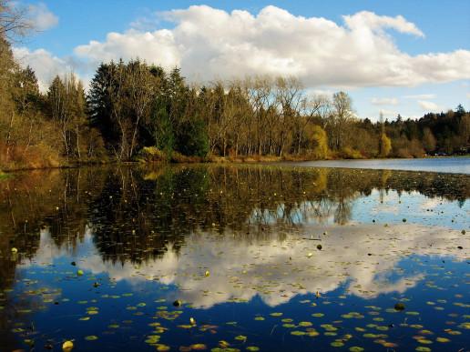 Deer Lake - Photo by Mike
