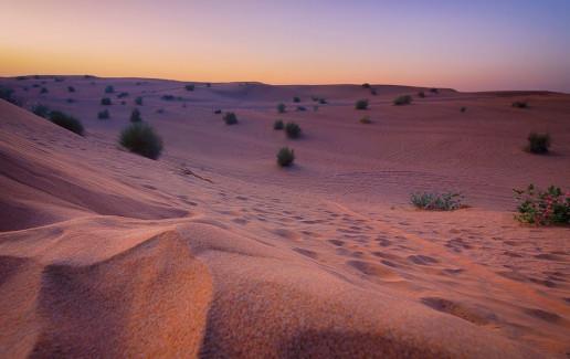 Dubai Dunes - Photo by Kent Tupas