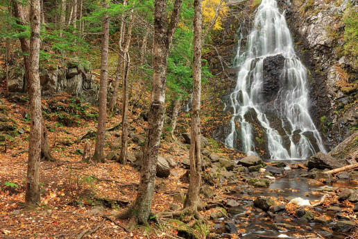 Hays Falls - Photo by Nicolas Raymond