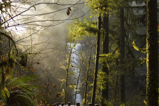 Hiking Trail to South Falls - Photo by Bonnie Moreland