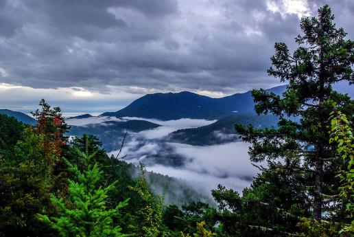 Hurricane Ridge - Photo by Rod Ramsell