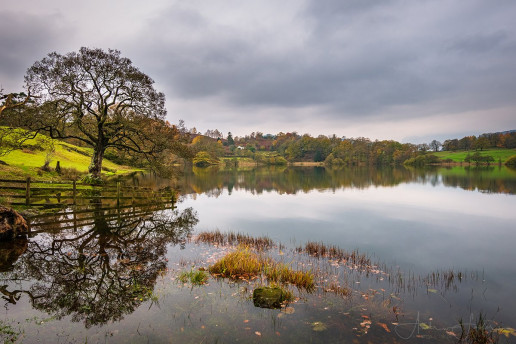 Loughrigg Tarn - Photo by Andrew Foster