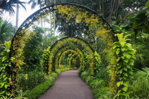Singapore Botanic Gardens - Photo by _paVan_