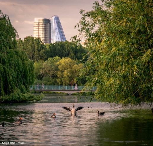 St James's Park - Photo by Srijit Bhaumick