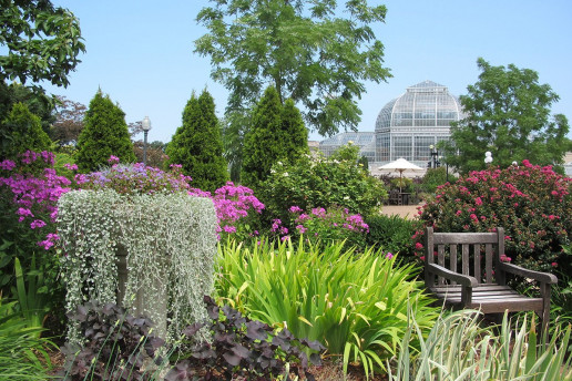 United States Botanic Garden - Photo by DC Gardens