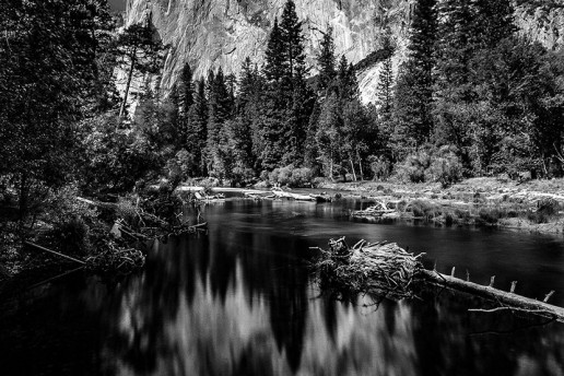 View of El Capitan - Photo by Brian Blackwell