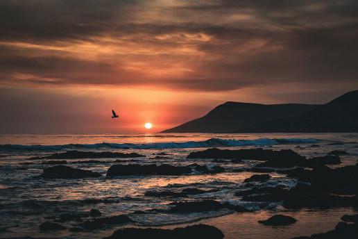 Cayucos State Beach - Photo by Tim Mossholder