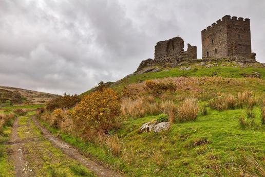 Dolwyddelan Castle by Nicolas Raymond
