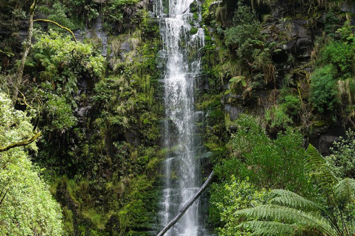 Erskine Falls by Bruce McLennan