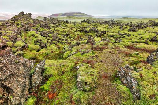 Lava Rock Formations by Nicolas Raymond