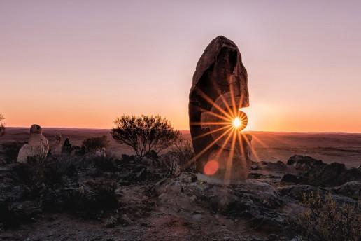 Living Desert Sculptures by Trevor McKinnon