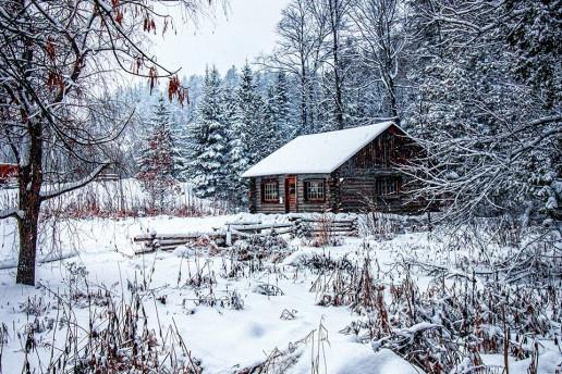 Log Cabin by Lana