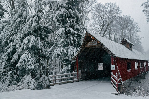 Loon Song Covered Bridge by Dennis Buchner