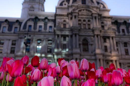 Philadelphia City Hall by Dan Mall