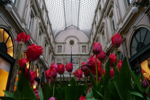 Royal Saint-Hubert Galleries by Matthew Ernst