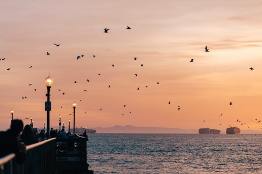 Seal Beach Municipal Pier by Lisha Riabinina