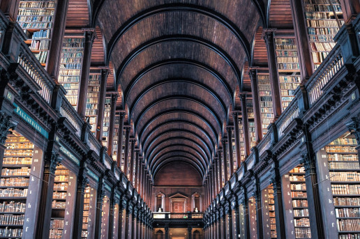 The Long Room by Rudy and Peter Skitterians