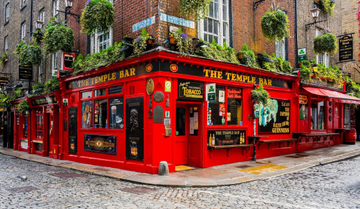 The Temple Bar by Leonhard Niederwimmer