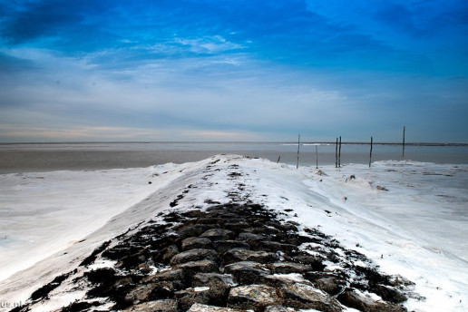 Wadden Sea by Sándor Maszárik
